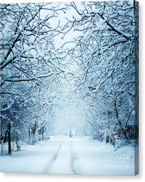 Hoarfrost Canvas Print - Winter Landscape by Triff