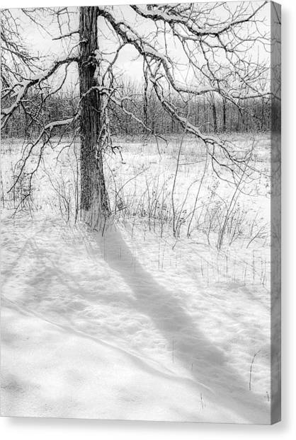 Winter Simple Canvas Print