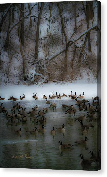 Canvas Print featuring the photograph Winter Swim by Edward Peterson