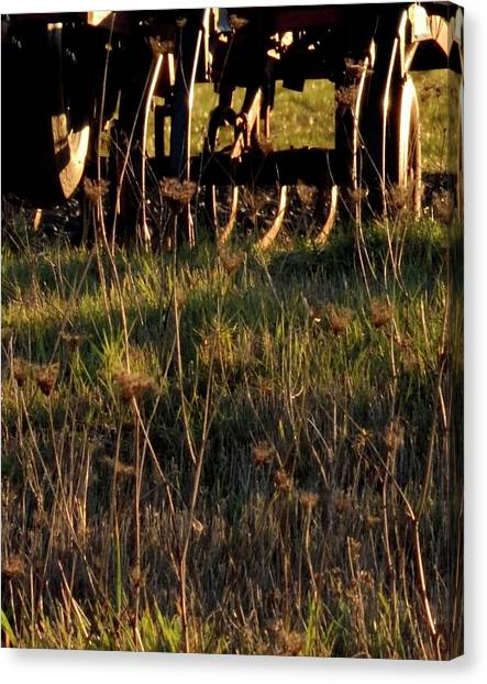 Canvas Print featuring the photograph Winter Thistles And Cultivator by Jerry Sodorff