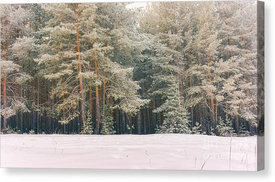 Hoarfrost Canvas Print - Wintry Landscape Scenery With Flat by Supertrooper