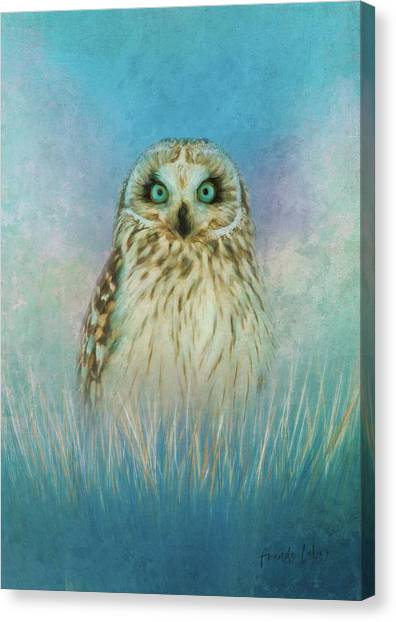 Canvas Print - Wise Owl by Amanda Lakey