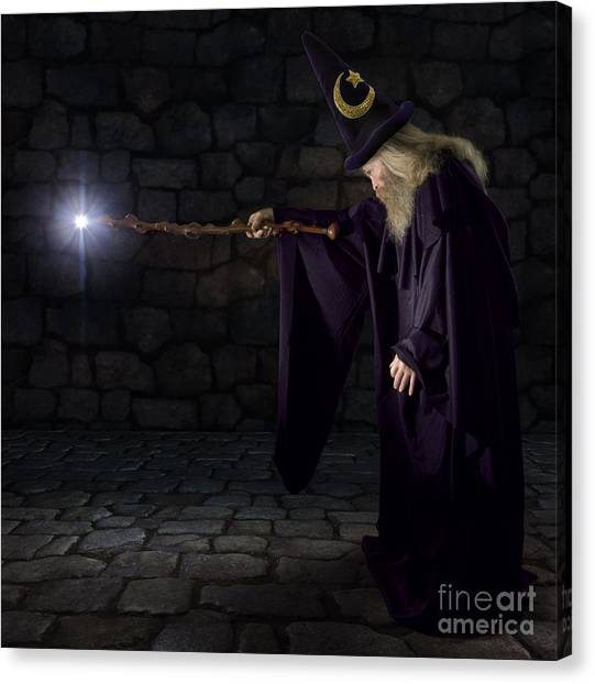 Wizard In A Purple Robe And Wizard Hat Canvas Print by James Steidl