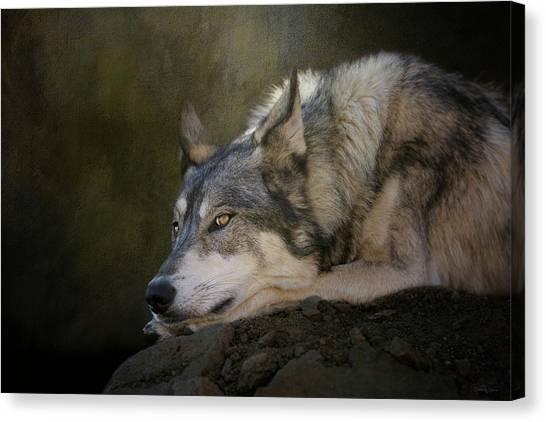 Wolf Watch Canvas Print