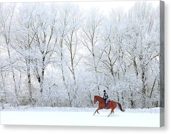 Purebred Canvas Print - Woman And Her Horse Cantering In Fresh by Horsemen
