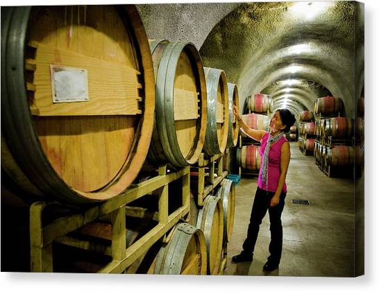 Sonoma Valley Canvas Print - Woman Inspecting Barrels In Cave At by Seanfboggs