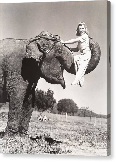 Happiness Canvas Print - Woman Sitting On Elephants Trunk by Everett Collection