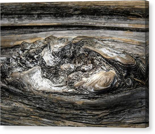 Canvas Print featuring the photograph Wood Skine by Juan Contreras