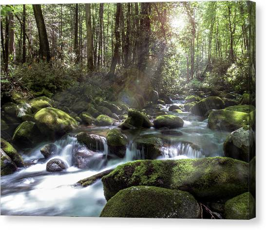 Canvas Print featuring the photograph Woodland Falls by Patti Deters