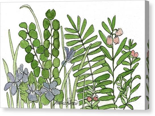 Woodland Ferns Violets Nature Illustration Canvas Print