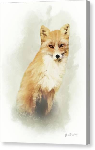 Woodland Canvas Print - Woodland Fox Portrait by Amanda Lakey
