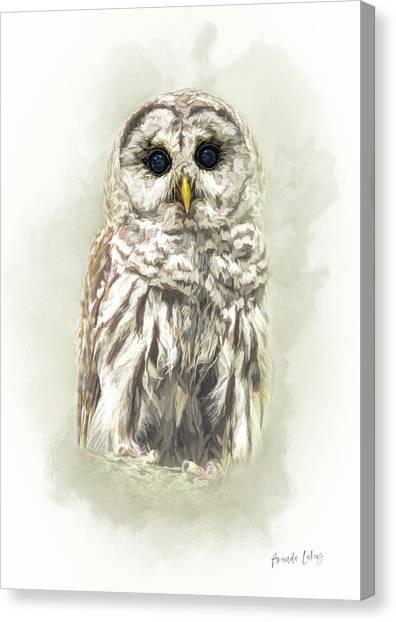 Woodland Canvas Print - Woodland Owl by Amanda Lakey