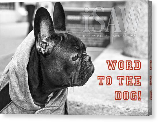 Canvas Print featuring the photograph Word To The Dog by ISAW Company