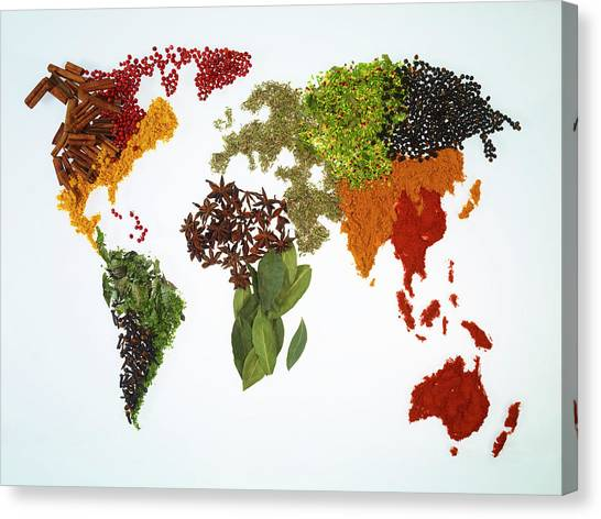 World Map With Spices And Herbs Canvas Print by Yamada Taro