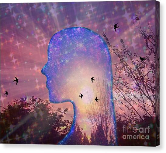 Worlds Within Worlds Canvas Print