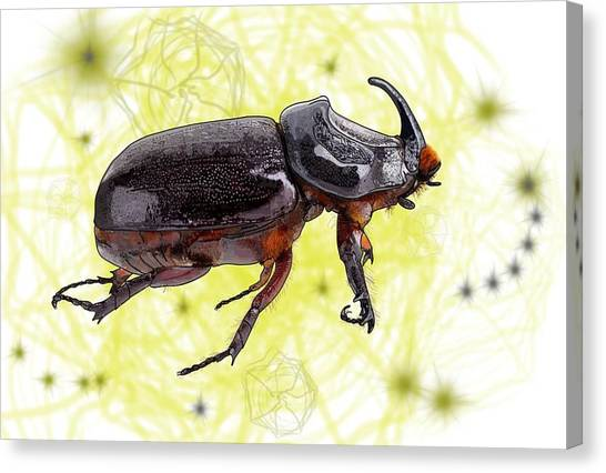 Canvas Print - X Is For Xylotrupes Ulysses  Aka Rhinoceros Beetle by Joan Stratton