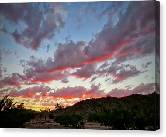 Canvas Print featuring the photograph Y Cactus Sunset  11 by Judy Kennedy