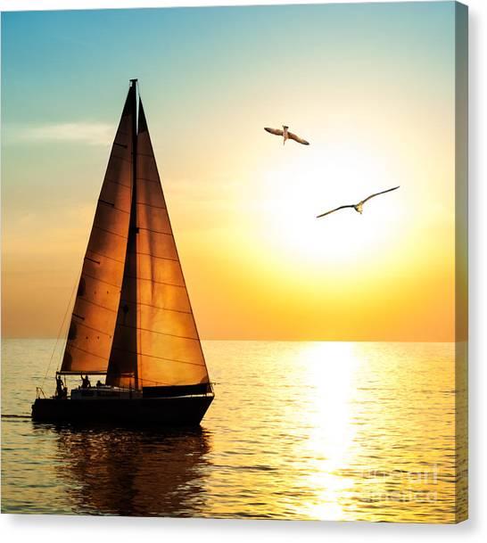 Seagull Canvas Print - Yacht Sailing Against Sunset. Holiday by Repina Valeriya