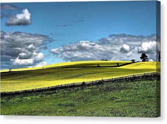 Nottinghamshire Canvas Print - Yellow And Green Field by Flick's Pix