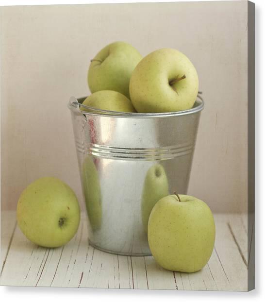 Yellow Apples In Metal Bucket Canvas Print