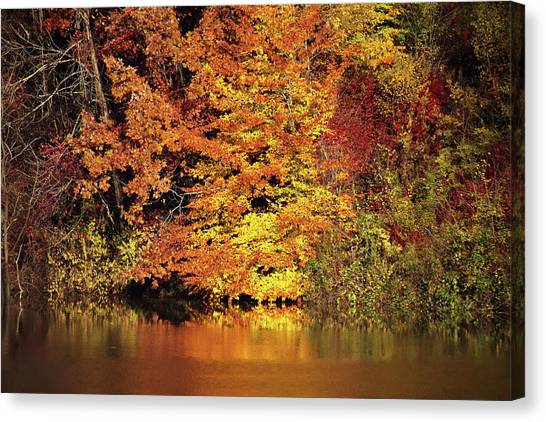 Canvas Print featuring the photograph Yellow Autumn Leaves by Mike Murdock