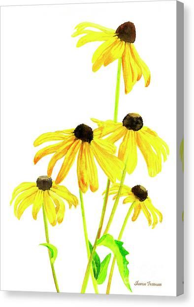 Susan Canvas Print - Yellow Black Eyed Susans by Sharon Freeman