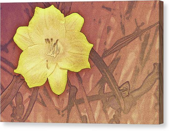 Yellow Day Lily Stencil On Sandstone Canvas Print