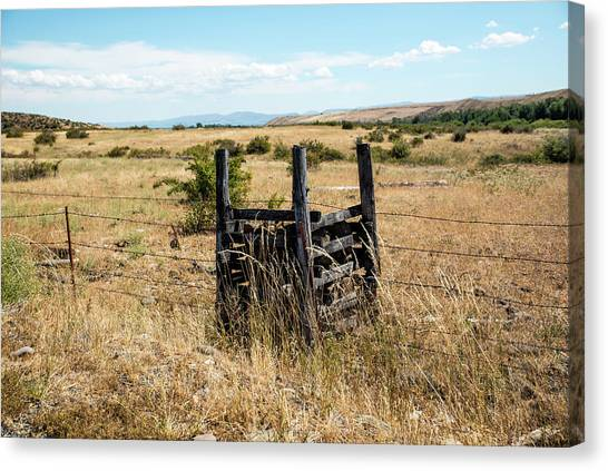 Yellow Grass And Fence Anchor Canvas Print