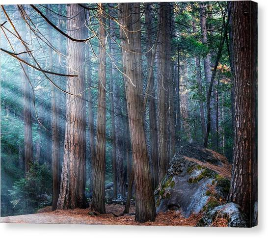 Canvas Print featuring the photograph Yosemite Sunbeams II by Rand