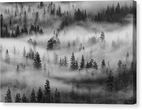 Canvas Print featuring the photograph Yosemite Valley Fog by Rand