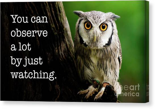 Southern Africa Canvas Print - You Can Observe A Lot By Just Watching by DiFigiano Photography