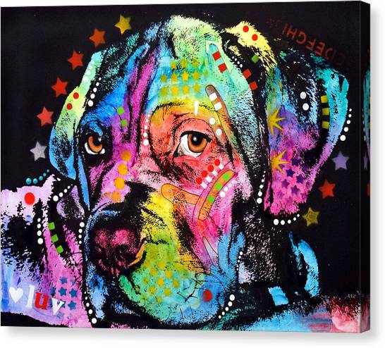 Young Mastiff Canvas Print by Dean Russo Art