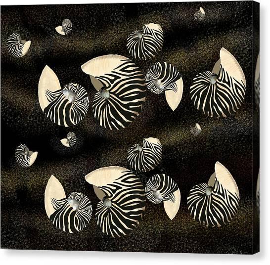 Zebra Pattern Nautilus Shells6 Canvas Print