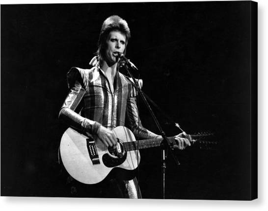 Ziggy Plays Guitar Canvas Print by Express