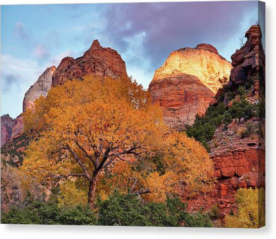 Zion Cliffs Autumn Canvas Print by Leland D Howard