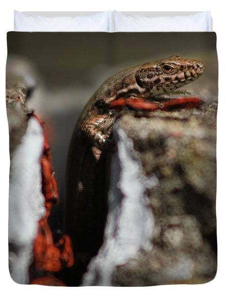 Duvet Cover featuring the photograph  A Lizard Emerging From Its Hole by Stwayne Keubrick