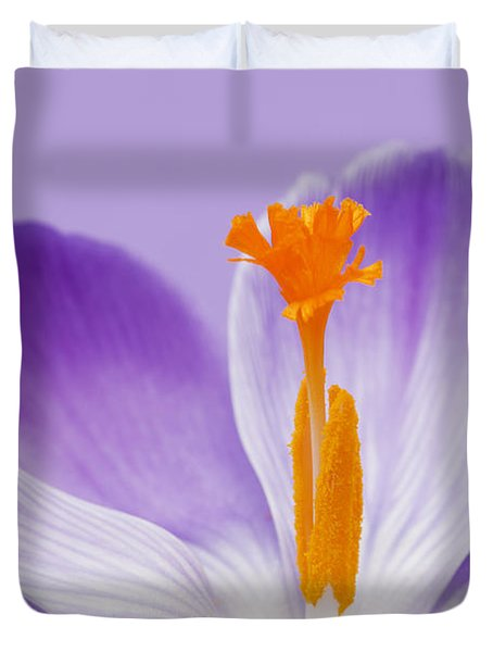 Abstract Purple Crocus Duvet Cover