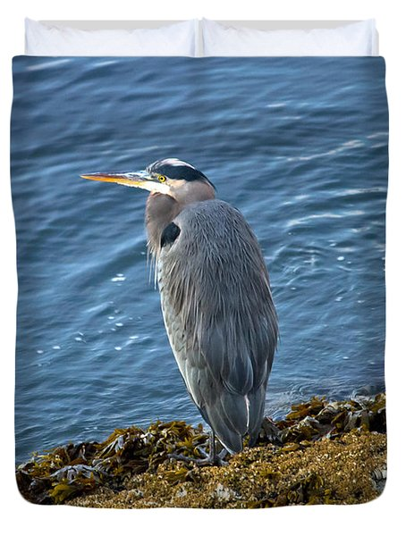 Duvet Cover featuring the photograph  Blue Heron On A Rock by Eti Reid