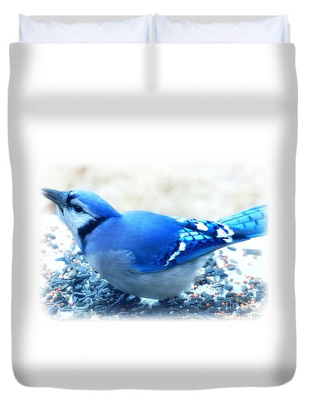 Bright Blue Jay  Duvet Cover by Peggy Franz