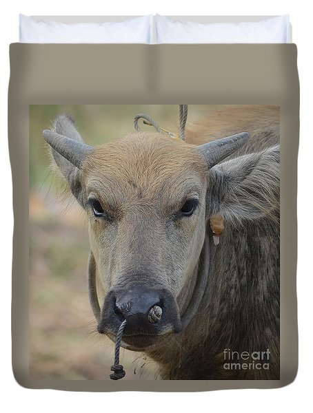 Duvet Cover featuring the photograph  Buffalo by Michelle Meenawong