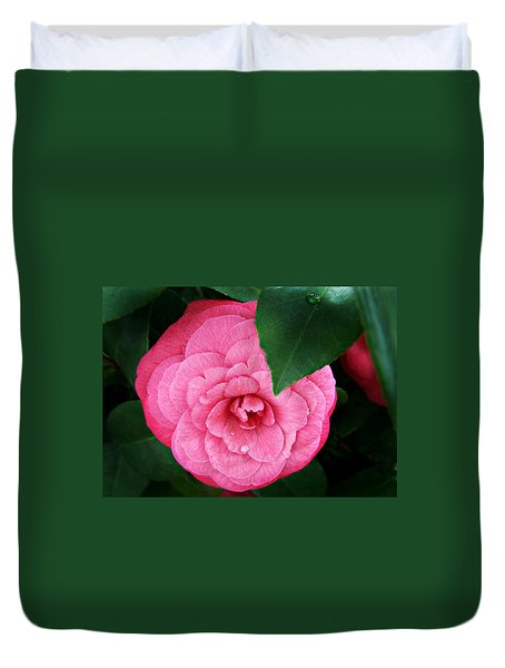 Duvet Cover featuring the photograph  Camellia Japonica ' Elizabeth Weaver ' by William Tanneberger