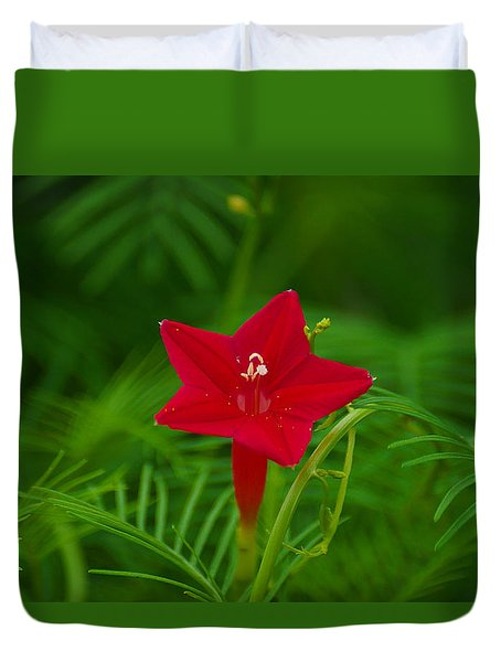 Cypressvine Morning Glory Duvet Cover
