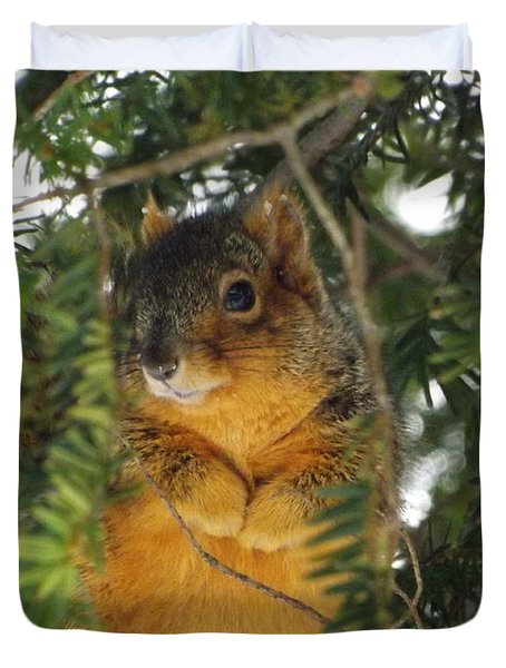 Fox Squirrel Duvet Cover