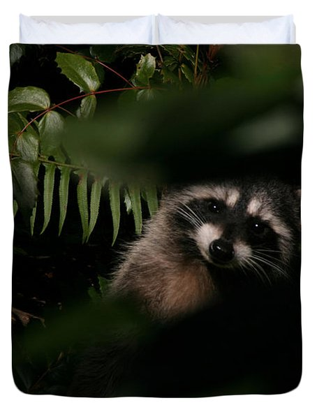 I Can See You  Mr. Raccoon Duvet Cover by Kym Backland
