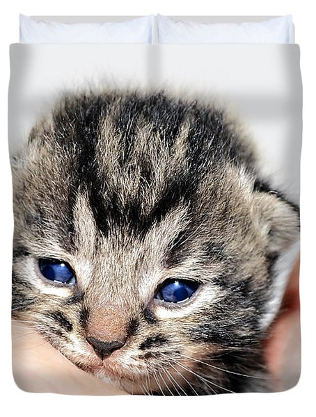Kitten In A Hand Duvet Cover