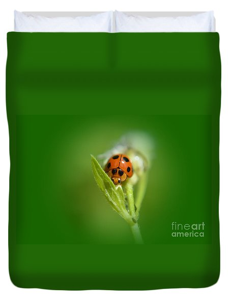Duvet Cover featuring the photograph  Ladybug by Michelle Meenawong