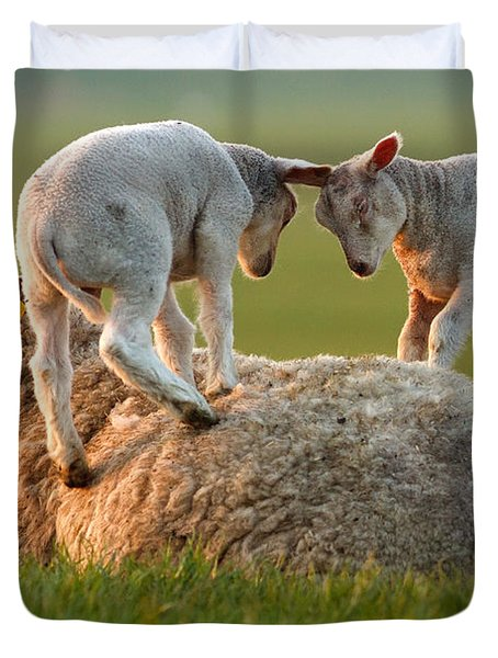 Leap Sheeping Lambs Duvet Cover by Roeselien Raimond