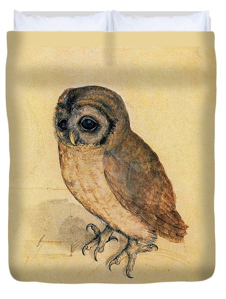 Little Owl Duvet Cover by Albrecht Durer