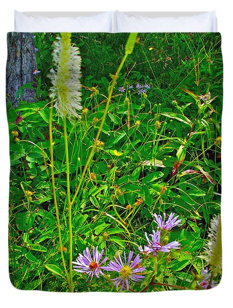 New York Asters And Canada Burnett By Lomond River Trail In Gros Morne Np-nl Duvet Cover