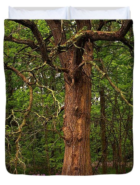 Oak Tree And Dame's Rocket Duvet Cover by Randy Pollard